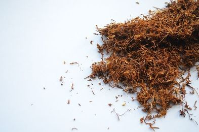Tytonie i gilzy do skręcania papierosów